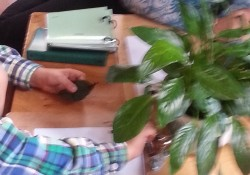 When a student has had trouble choosing an activity to work on, his teacher sits with him and a plant lesson. They spend the next 15-20 minutes talking about and examining the plant.